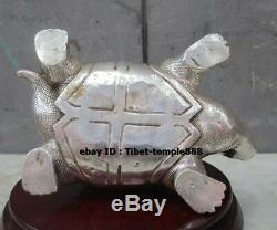 26 CM Chinese Bronze Silver-gilt Amulet Tortoise Turtle Fengshui Animal Statue
