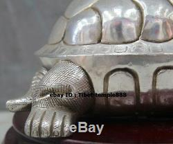 26 CM Bronze Chinois Doré Amulette Tortue Tortue Statue Fengshui Animal